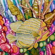 Rainbow-colored Sunfish Art Print