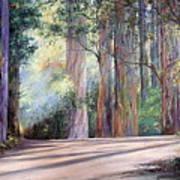 Rainbow Lane Art Print