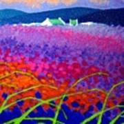 Rainbow Meadow Art Print by John  Nolan