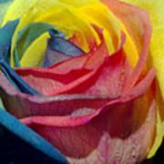 Rainbow Of Love 2 Art Print by Karen Musick