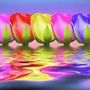 Rainbow Of Roses II Art Print