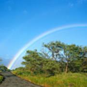 Rainbow Over Treetops Art Print