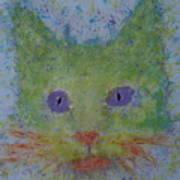 Rainbow Tomcat Art Print