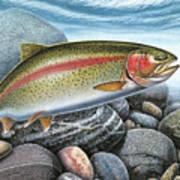 Rainbow Trout Stream Art Print by JQ Licensing