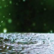 Raindrops Rejuvinate Art Print