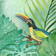 Rainforest Tropical - Tropical Toucan W Philodendron Elephant Ear And Palm Leaves Art Print
