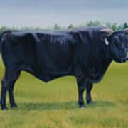 Ralphs Bull Art Print by Stacey Neumiller