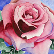 Ramblin' Rose Art Print