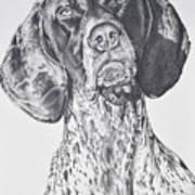 Ramsay Art Print