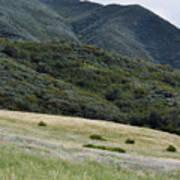 Rancho Sierra Vista Satwiwa Mountains Portrait Art Print