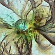 Raniform Daydream  Id 16098-004020-83150 Art Print