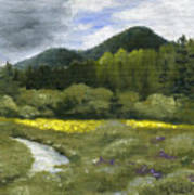 Rapid Creek Art Print