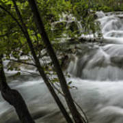 Rapids In Forest  Art Print