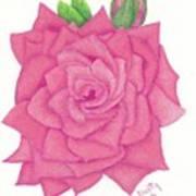 Raspberry Pink Art Print