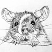 Rat Sketch Art Print