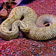 Rattlesnake In Abstract Art Print