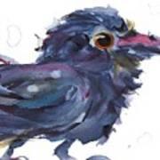 Raven 3 Art Print
