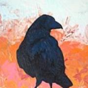 Raven IIi Art Print