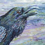 Raven Study 4 Art Print