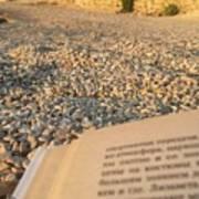Reading A Book On Pebble Beach Art Print