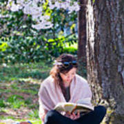 Reading Beneath The Cherry Blossoms Art Print
