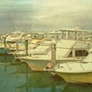 Ready For Fishing  Art Print