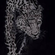 Realistic Cheeta Art Print