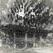 Rear Of Cabin Art Print