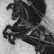 Rearing Horses Art Print