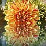 Red And Yellow Reflection Art Print