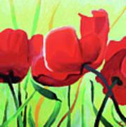 Red Anemonies Art Print