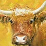 Red Angus Cow Art Print