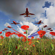 Red Arrows Poppy Fly Past Art Print