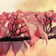 Red Autumn Day Art Print