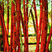 Red Bamboo Art Print