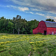Red Barn In A Yellow Field  Art Print