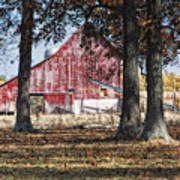 Red Barn Through The Trees Art Print