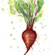 Red Beet Watercolor Art Print