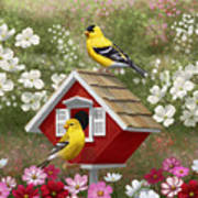 Red Birdhouse And Goldfinches Art Print by Crista Forest