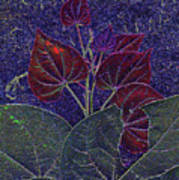 Red Bud Art Print