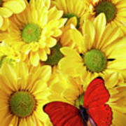 Red Butterfly On Yellow Mums Print by Garry Gay