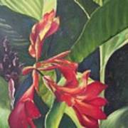 Red Cannas Art Print by Deleas Kilgore