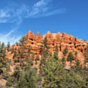Red Canyon Tableau Art Print