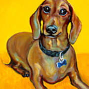 Red Dachshund - Tigger Smiles Art Print