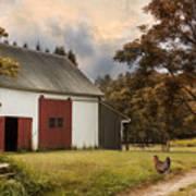 Red Door Farm Art Print