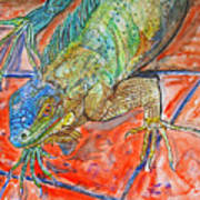 Red Eyed Iguana Art Print