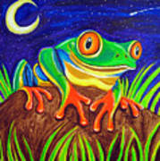 Red-eyed Tree Frog And Starry Night Art Print