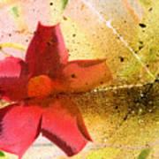 Red Floral Grunge Art Print
