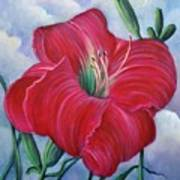 Red Flower Dreams Art Print