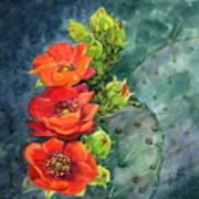 Red Flowering Prickly Pear Cactus Art Print